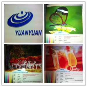 Best Super Wide (up to 3.2M) PET Backlit Film for Eco-solvent & Solvent, UV Ink wholesale