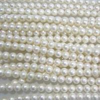 China Fresh water pearls, available in AAA, AA and A grades on sale
