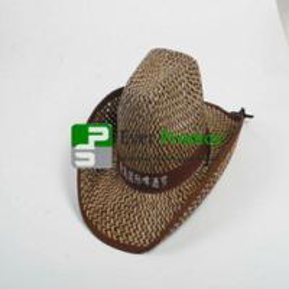 China straw cowboy hat on sale