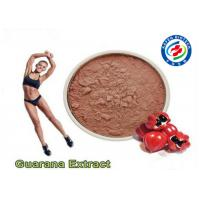 Best Natural Plant Guarana Extract Powder , CAS 58-08-2 Guarana Extract Weight Loss wholesale