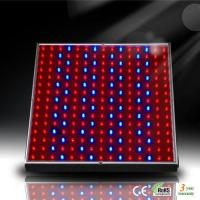 Best 14W LED Aquarium Panel for Marine Fish and Coral Reef Growth wholesale