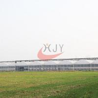 Best Agriculture Plastic Large Multi Span Greenhouse for Sale Plastic Film Multi-Span Greenhouses wholesale