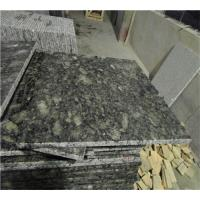 China Butterfly Green Cleaning Granite Countertops Surface Polished Design on sale