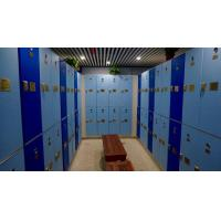 Best Triple Tier Lockers With E - Lock , Blue Plastic Employee Lockers For Hotel wholesale