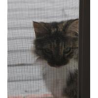 Best Special durable pet mesh paw proof heavy duty flyscreen for window and door wholesale