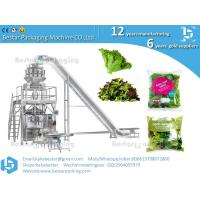 Best Fresh vegetable leaf salad garden salad packing machine wholesale
