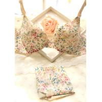 China lds one piece seamless padded push up bra with brief, alloverprinted on sale