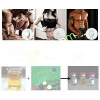 Best 3704-09-4 Tren Anabolic Steroid Cheque Drops Powder Male Enhancement Drugs Mibolerone Acetate wholesale