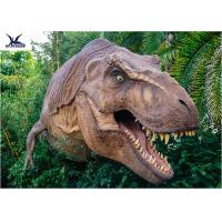 Dinosaur Yard Statue With Realistic Head Model , Dinosaur Garden Sculpture