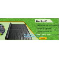 Best pp weed mat organic agricultural plastic mulch, recyclable weed barrier,PP ground mat /concert crowd control barrier wee wholesale