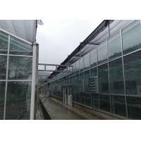 Best Farm Tempered Glass Greenhouse Hollow Insulated Building Facade High Strength wholesale