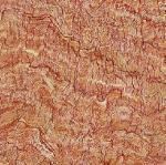 Best Rustic Floor Tiles  (FH-TR06) wholesale