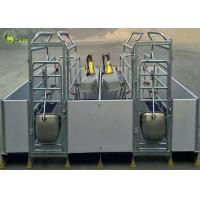 Best Welding Pig Farrowing Crate , Turn Around Farrowing Crates PVC Fence wholesale