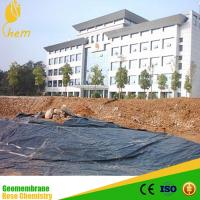China Black Hdpe Plastic Sheet HDPE Geomembrane Suppliers on sale