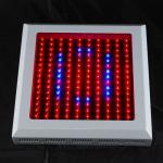 Best Bridgelux 150w Flowering LED Grow Light CRI 80 IP55 380nm - 800nm wholesale