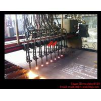 Best Flame CNC Gantry Cutting Machine Single Side Drive For Plate Cutting 5000mm Rail span wholesale
