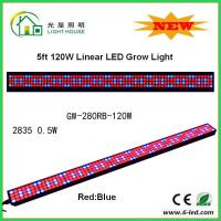 Best IP44 High Brightness Linear Grow Lights For Indoor Plants , PPMA Cover wholesale