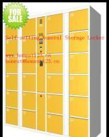 Self-setting Digital Electronic Storage Locker