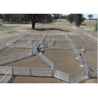 Green Color Livestock Metal Fence Panels For Cattle / Horse / Sheep 6'H*8'L