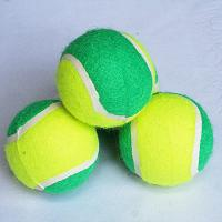 Best Pet Toy Rubber Ball wholesale