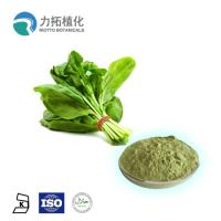 Best Organic Natural Vegetable Powder / Natural Plant Extracts Spinacia Oleracea L wholesale