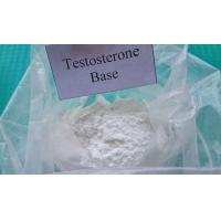 Best Pharmaceutical Raw Testosterone Powder Testosterone Base CAS 58-22-0 Muscle Enhancement Steroids for Male wholesale