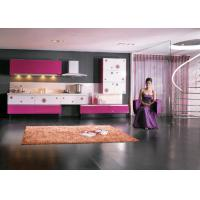Commercial Lacquer Spray Painting Kitchen Cupboards Stainless Steel Contemporary