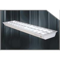 China Supply Supply T5 Louver Lighting Fixture 2*28w on sale