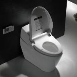 Ceramic intelligent toilet with electronic bidet toilet seat