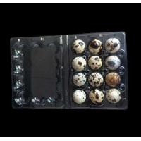 Best Disposable plastic quail egg tray 12 holes quail egg tray plastic egg tray for quail eggs 12 slots wholesale