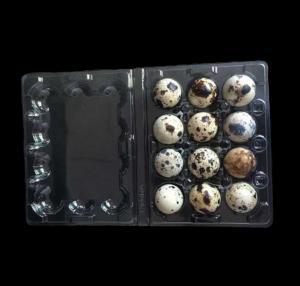 Best Disposable plastic quail egg tray 12 holes quail egg tray plastic egg tray for quail eggs 12 slots wholesale