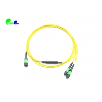 Best 9/125um 100Gbps LSZH 24F 2 Meter MPO Trunk Cable wholesale