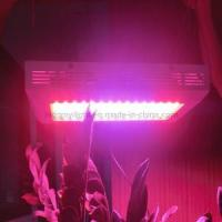 High Effective 120W LED Grow Light with Patent (WL-BF120A8101)