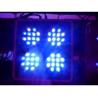 Best Apollo-4 LED Coral Reef Aquarium Lights with 2 Switches and 2 Power Cords (Apollo4) wholesale