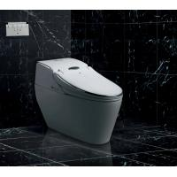 Buy cheap HK760 big size silver one piece Intelligent Smart Toilet Seat bidet from wholesalers