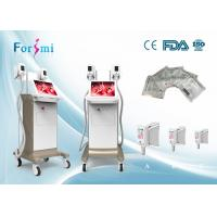 China CE approved 15 inch screen Cryolipolysis Fat freezing machine for your body reshape on sale