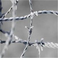 China Hot-dip Zinc Plating Barbed Wire on sale