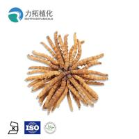 Best 30% - 50% Mushroom Polysaccharides Cordyceps Sinensis Extract With Brown Powder wholesale