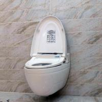 Best New design ceramic intelligent smart wall hung toilet wholesale