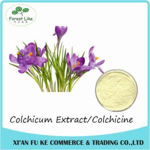 Best Best Selling Colchicum Extract Colchicine 98% CAS NO:64- 86 - 8 wholesale