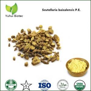 Best baicalin 85%,pure natural baicalin,baikal skullcap extract baicalin,98% baicalin wholesale