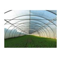 Best Agricultural Greenhouse Steel Pipe High Tunnel Durable Maintenance Free wholesale