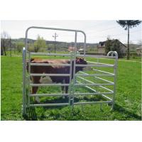 Cheap Light Weight Cattle Corral Panels Animal Fence Panels Round / Square / Oval Tube Type for sale