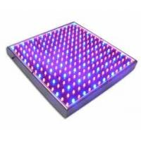 Best 12W-3GS red, blue led hydroponic& Horticulture & greenhouse grow lights 120x62x62mm wholesale