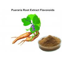 Best Pueraria Natural Plant Extracts 40% Flavonoids for Hangover breast enhancement / postponed female menopause wholesale