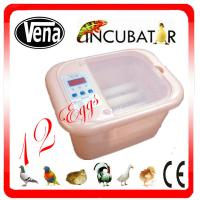 China 2014 top selling 12 eggs mini egg incubator for quail/full automatic mini chicken egg incubator with CE approved on sale