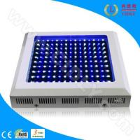 Best 150W LED Aquarium Light for Corals & Reefs wholesale