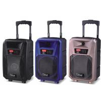 Buy cheap Pro Active Outdoor Portable Bluetooth Trolley Speaker Battery Powered PA System product