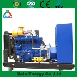 Best 20KW biogaselectricgenerator for light wholesale