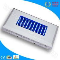 Best 60W LED Aquarium Light for Coral Reef wholesale
